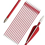 PANDARUS Youth Safetyglass Arrows 28' Fiberglass Archery 26' Target Practice Arrows(Pack of 12) (26 inch Red)