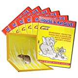 Mouse Traps, Mouse Rat Mice Glue Traps, New Version Strongly Adhesive, Mouse Traps Glue Sticky Boards That Work Indoor for Mice Cock Roach Ant Spider, 6 Pack Yellow