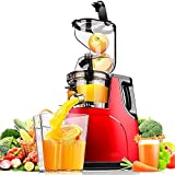 DHHZRKJ Exprimidor de masticación, exprimidor Lento, Extractor eléctrico de máquina de prensado en frío para Frutas y Verduras Enteras, Motor silencioso, función inversa, sin BPA