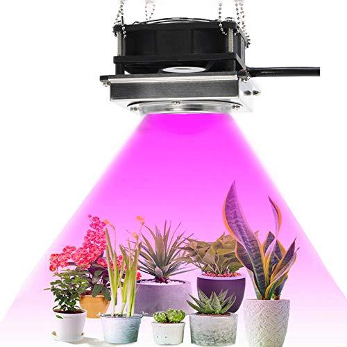 SATSAT Luz De Cultivo COB De Espectro Completo, LáMpara De Cultivo Led De Alta Eficiencia Luminosa De 3000 W para IluminacióN De Crecimiento De Plantas De Invernadero HidropóNico Interior, Bajo Ruido