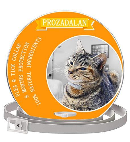 PROZADALAN Collare Antipulci per Gatti Impermeabile, Gatto Antipulci Collare Pulci e Zecche Collare, 8 Mesi di Efficacia Protezione Pettorale in Gomma Repellente (1PCS)