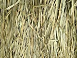 Tiki Bar Palm Thatch Grass Bundle (4 Pieces - Each Sheet is 5'H x 4'W)