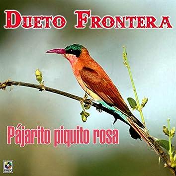 Pajarito Piquito Rosa