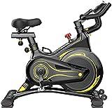 UYZ Bicicletas estáticas, Bicicleta de Ejercicios Profesional para Interiores, Soporte Acolchado para Brazos, Asiento cómodo con Correa de transmisión de bajo Ruido, Bicicleta de Ejercicios Vert
