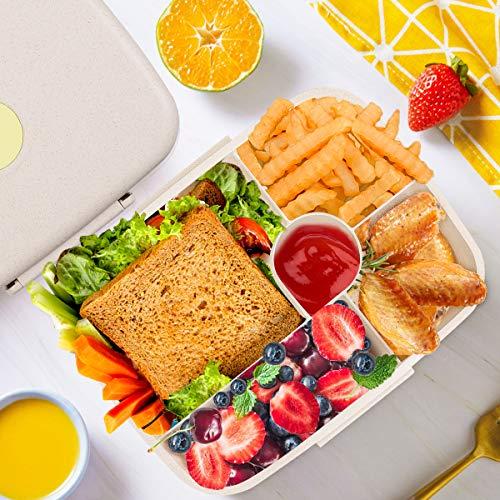 Reutilizable Baban lonchera bento Caja sin BPA contenedores de Alimentos para Adultos Apto para la Escuela Respetuoso con el Medio Ambiente Oficina Viajes