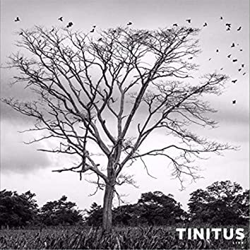 Tinitus Live
