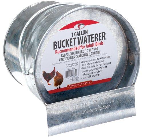 Little Giant 2 in 1 Bucket Poultry Waterer Galvanized Bucket Poultry Waterer (Item No. 167611)