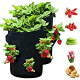 GOICC Bolsas de Cultivo de Fresa, Bolsa de Planta de Fresa, Bolsa para Plantas, Material no Tejido Espesado,Negro,2pcs