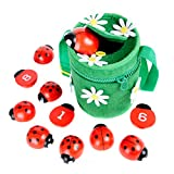 Counting Ladybugs - Montessori Counting Toys for Toddlers -...