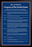 Blue Bill of Rights of The United States of America Historical Black Wood Framed Poster 14x20