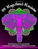 99 Magnificent Mandalas A Coloring Book for...