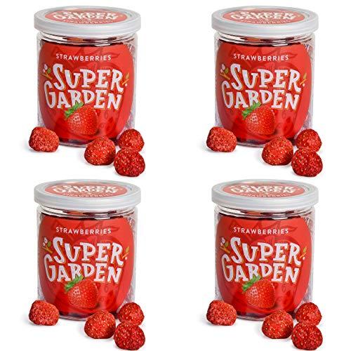 Super Garden paquete económico: 4 tazas de fresa liofilizada - Snack saludable - 100 % puro y natural - Apto para veganos - Sin azúcares, aditivos artificiales ni conservantes añadidos - Sin gluten