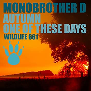 Autumn / One of These Days