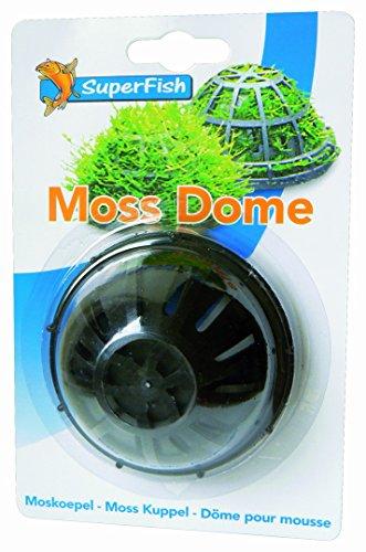 SF Mooskuppel, Pflanzkissen für dekorative Moospolster, für Riccia- und Moss-Polster