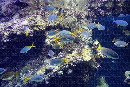 GZFENG Puzzle für Erwachsene Monaco Museum Aquarium Monte Carlo Puzzle 1000 Stück hölzernes Reisesouvenir
