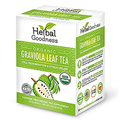 Graviola Leaf Tea - From Soursop Dried Leaves – Organic Certified non-gmo Kosher – Cell Support & Regeneration, Stress Relief, Calm Relaxation - Caffeine Free – 24/1g Tea Bags/Box - Herbal Goodness by Herbal Graviola