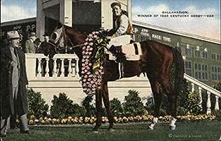 Gallahadion, Winner of 1940 Kentucky Derby Horse Racing Original Vintage Postcard