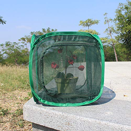 MYYINGELE ButterflyInsect and Butterfly Habitat Cage Terrarium Collapsible Butterfly Habitat Butterfly Cage Insect Net Terrarium Pop-up for Kids for Kids, M