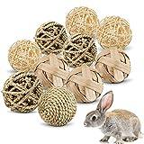 10 Stück Kaubälle, Kleintiere Kauspielzeug, Kaninchen Kaubälle, Heu Ball Kauspielzeug, Kleintierspielzeug Ball, kaninchen ball, Kauspielzeug Grasball, Grasball Für Kaninchen, hasen spielzeug (10PCS)