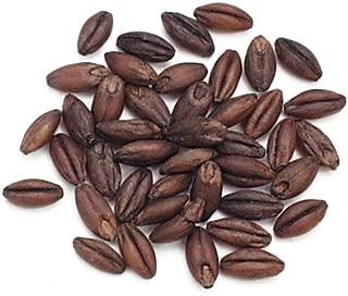 black roasted barley