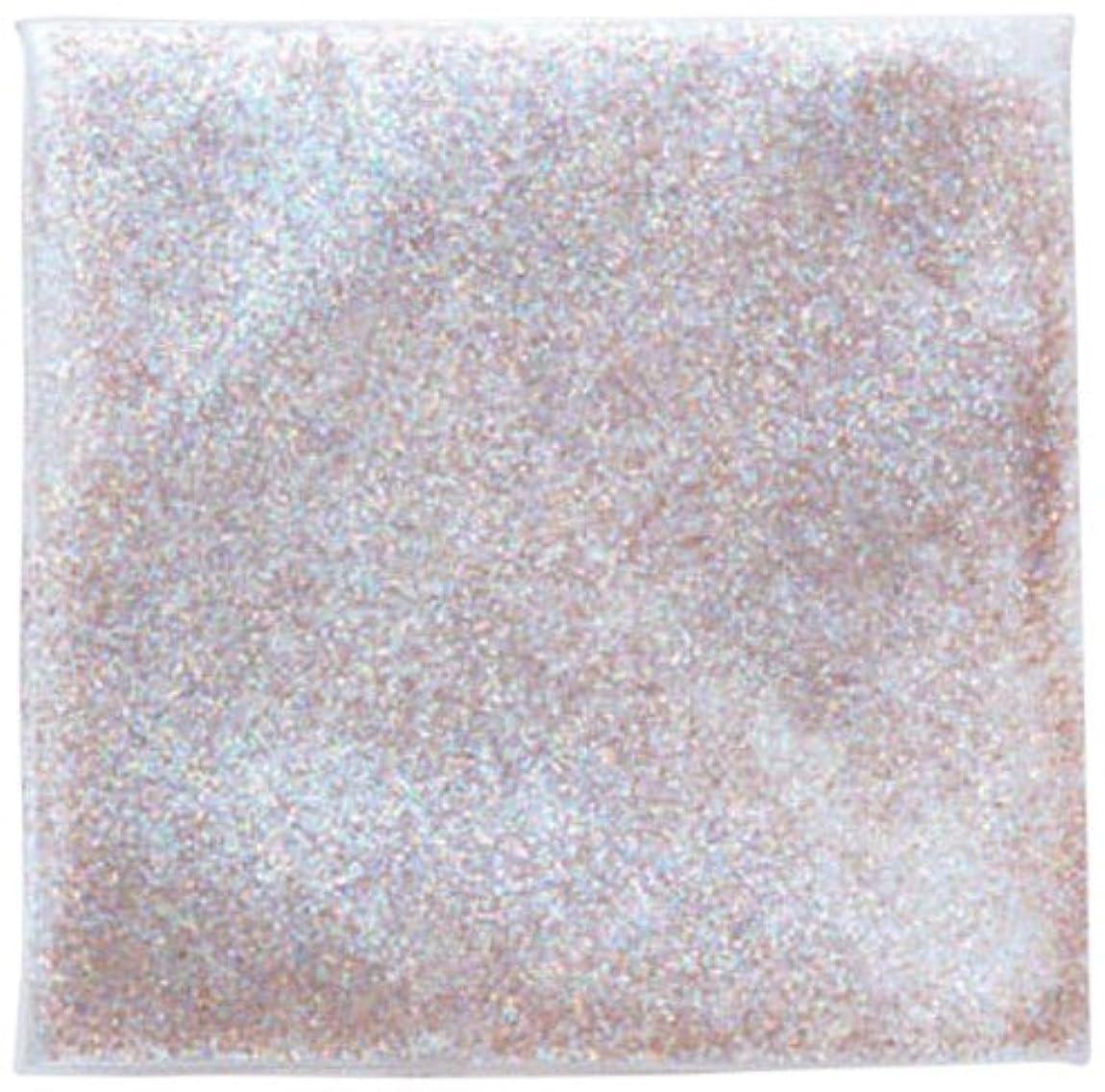 罰考古学ヒールピカエース ネイル用パウダー ラメパステルレインボー S #449 ブラウン 0.7g