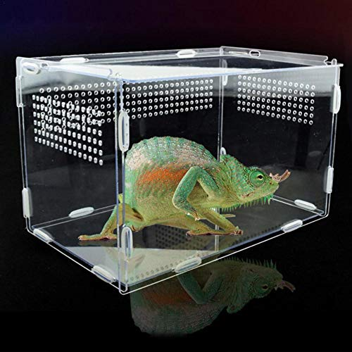 ZQYX Reptile Clear Terrarium Habitat, Acryl-Vollansichts-Fütterungsbox, tragbare Reptilien-Zuchtbox mit kleinen Luftlöchern für Insekten-Spinnen-Eidechsen-Frosch-Cricket-Schildkröten-Schnecken-Raupen