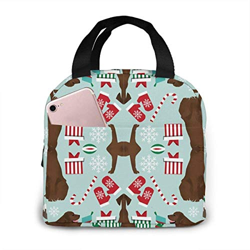 TTmom Chocolate Lab Christmas Lunch Box Insulated Lunch Bag Large Cooler Tote Bag for Men, Women, Double Deck