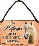 """Blechschild Pferde Spruch & Motiv """"Der Haflinger"""" Deko"""