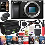 Sony a6100 Mirrorless Camera 4K APS-C Body Only Interchangeable Lens Camera ILCE-6100B Bundle with 2X Battery + Deco Gear Travel Bag Case + 64GB Memory Card + Photo Video Software Kit + Accessories