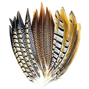 18 Pcs Natural Pheasant Feathers for Crafts DIY Decoration Collection Tails Feathers in 3 Styles 25-30cm …  Style 1