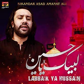 Labbaik Ya Hussain - Single