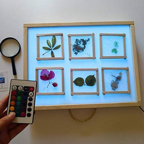 R-Crea - Mesa de luz Montessori RGB 48x37x7 Color Natural - Certificadas por la Universidad de Murcia ⭐