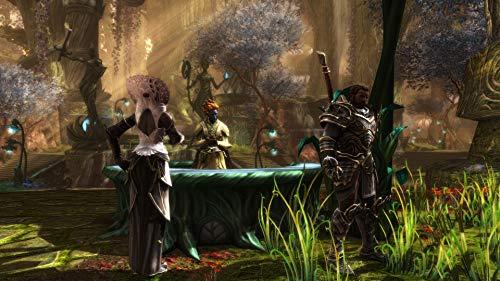 51EnM1w6T0L - Kingdoms of Amalur Re-Reckoning - PlayStation 4 Standard Edition