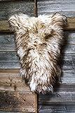 ESTRO | Authentique Tapis en Peau ou en Fourrure de Mouton ISLANDAIS | Brillant et Luxueux | Variété de Couleur ESI (Wolf Tip, 110 cm)