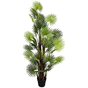 Silk Flower Arrangements THE BLOOM TIMES Artificial Fan Palm Tree 6 FT Fake Palm Tree Faux House Plants in Pots for Indoor Outdoor Home Office Living Room Front Porch Decor (Fan Palm Tree)