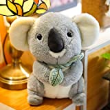 Oso de peluche de koala, peluche de koala, muñeca de juguete, muñeca, regalo de niña