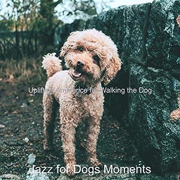 Uplifting Ambiance for Walking the Dog