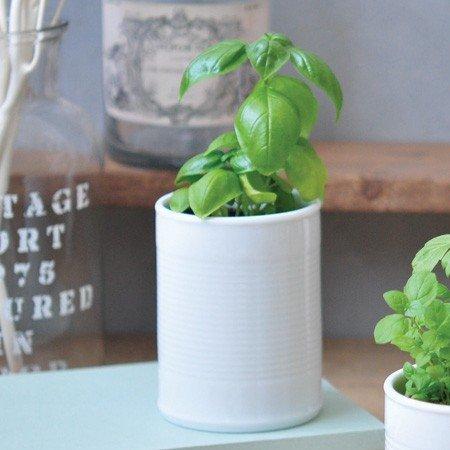 Noted Basilic Pot Céramique