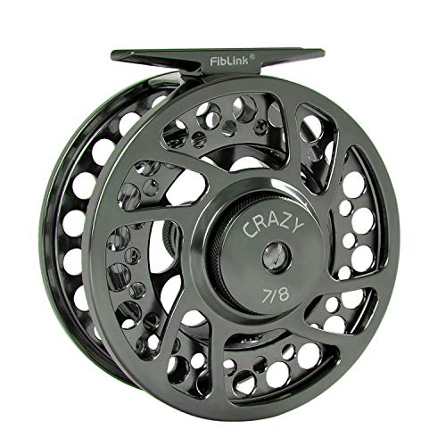Fiblink Saltwater Fly Fishing Reel with Large Arbor 2+1 BB, CNC machined Aluminum Alloy Body and Spool (7/8 Wt, Silver)