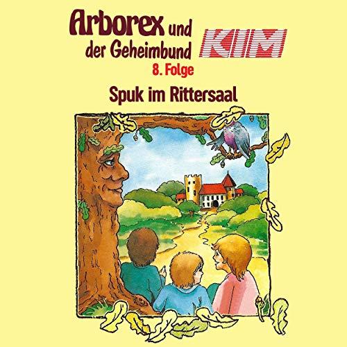 Page de couverture de Spuk im Rittersaal