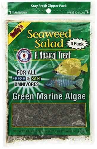 San Francisco Bay Brand ASF75004 4-Pack Seaweed Salad for Fresh and Salt Omnivores, Green
