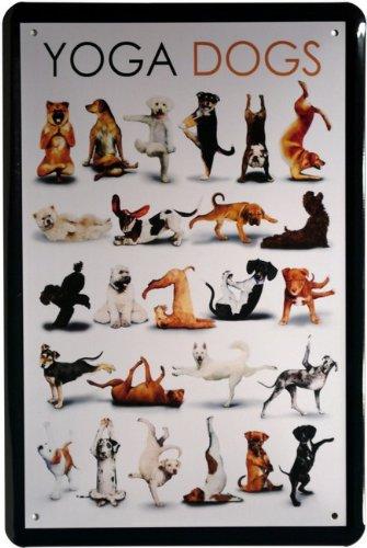 Cartel de chapa Comic Yoga Perros 20x 30cm Diseño Retro 814