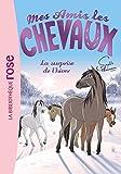 Mes amis les chevaux, tome 7 - La surprise de l'hiver