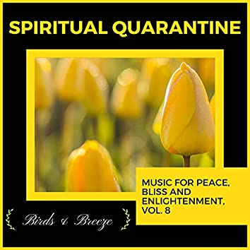 Spiritual Quarantine - Music For Peace, Bliss And Enlightenment, Vol. 8