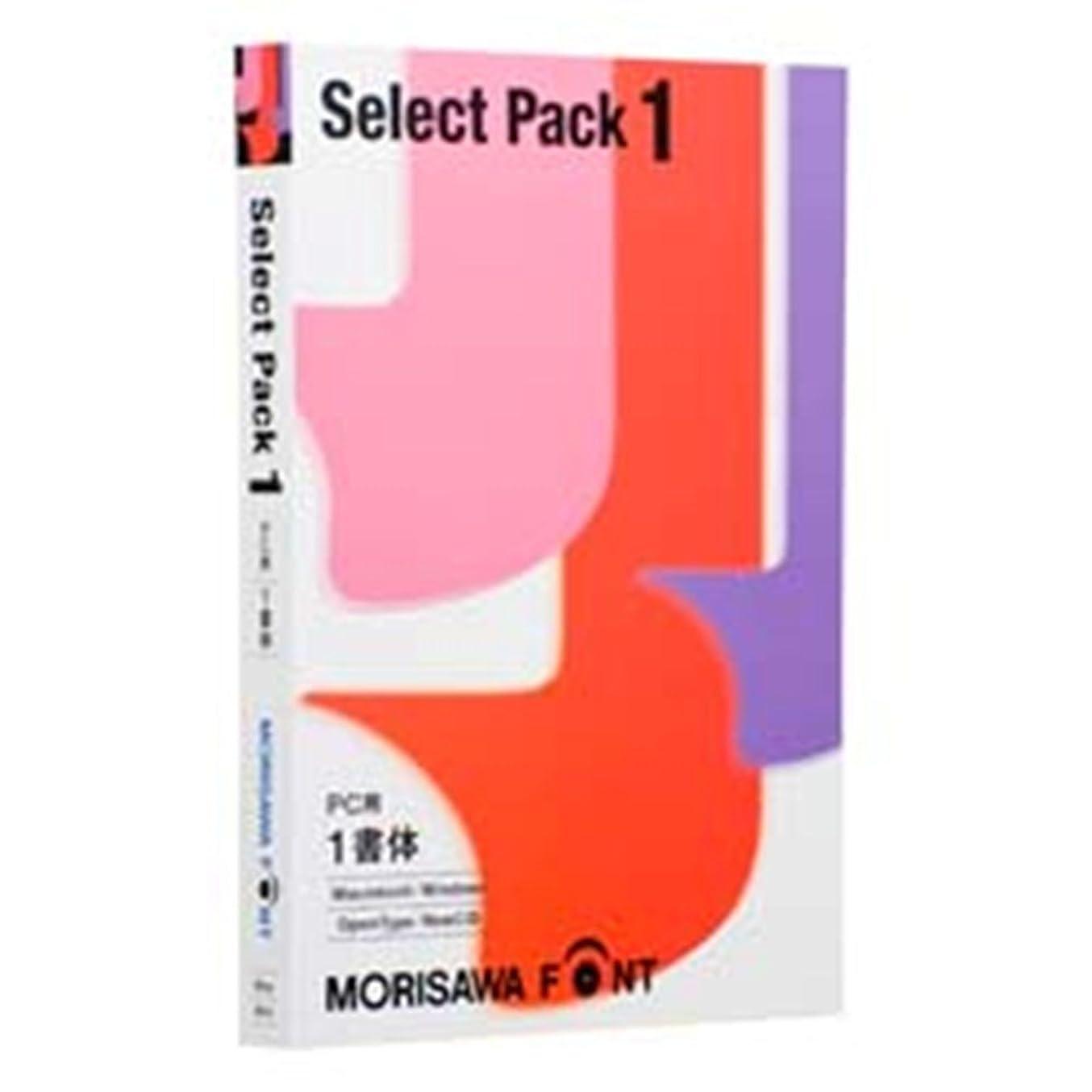 熱狂的な路地解釈MORISAWA Font Select Pack 1 [PC用]