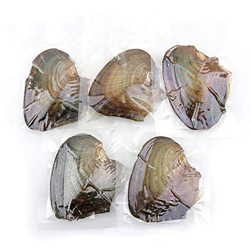 Divistar, 10 ostriche Akoya con perle ovali coltivate all'interno (7,5 – 8 mm)