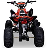 Kinder Quad 125 ccm orange/weiß Panthera - 6