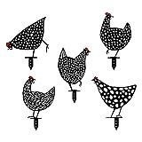 MISS YOU Decorazione del Gallo e della Gallina, Figure del Giardino di Pollo per Giardino Esterno GNOME GNOME Decorazione del Giardino Divertente per Esterni (5 Confezioni)