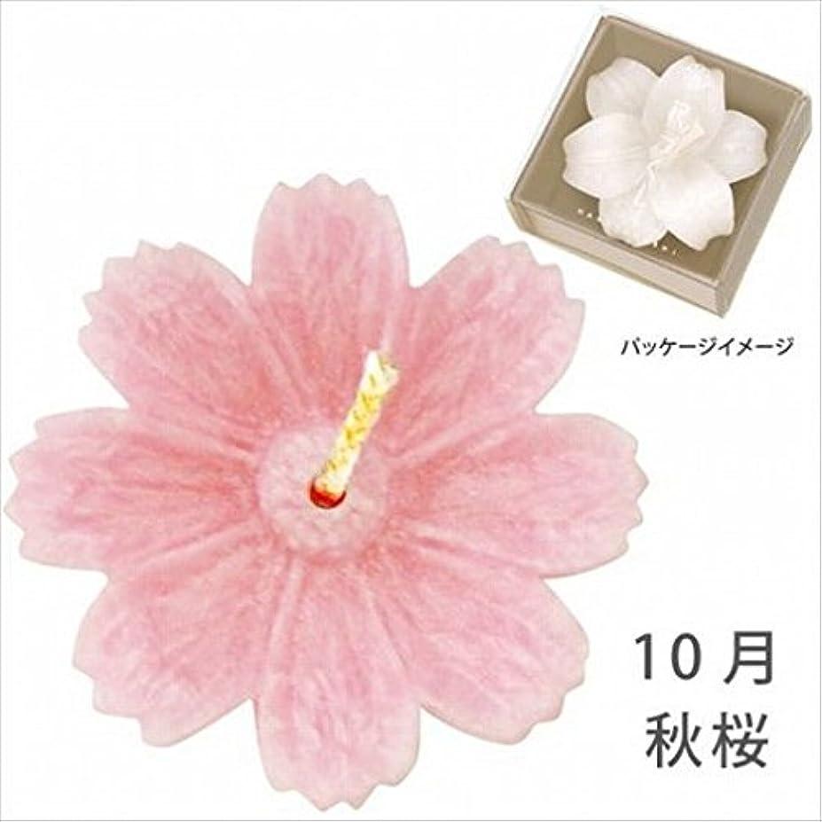 キルス古い舞い上がるkameyama candle(カメヤマキャンドル) 花づくし(植物性) 秋桜 「 秋桜(10月) 」 キャンドル(A4620515)
