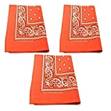 M.H.I. 3 Pack Dog Bandana Neck Scarf Paisley 100% Cotton Double Sided Bandanas - Any Pets (Orange)